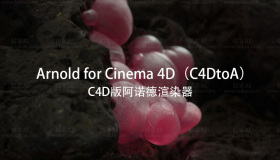 Solid Angle C4D to Arnold v3.0.1 for Cinema 4D R19-R21 Win 简称 C4DtoA