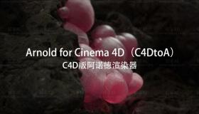 C4D阿诺德渲染器 Arnold 3.0.3 for Cinema 4D R19-S22